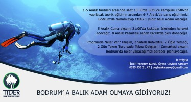 tider_balik_adam